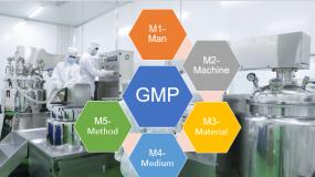 5 đối tượng cơ bản trong thực hành áp dụng tiêu chuẩn GMP - Nguyên tắc 5M