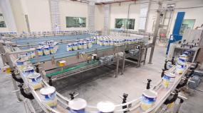 Viet Y Dairy Factory - HACCP GMP Certification