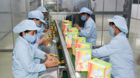 Cozy Tea manufacturing Facility - HS GMP Certification