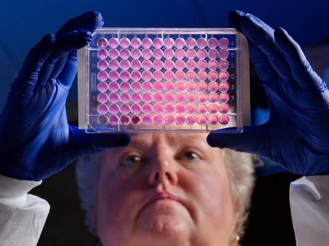 Cạn kiệt kháng sinh: Các công ty dược phẩm lớn nhất thế giới lần lượt đóng cửa chương trình nghiên cứu